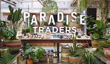 Paradise Traders | Plant Package