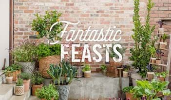 Fantastic Feasts | Plant Package